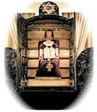 Torah in Ark